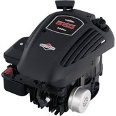 Briggs & Stratton Briggs & Stratton Replacement Engine Only